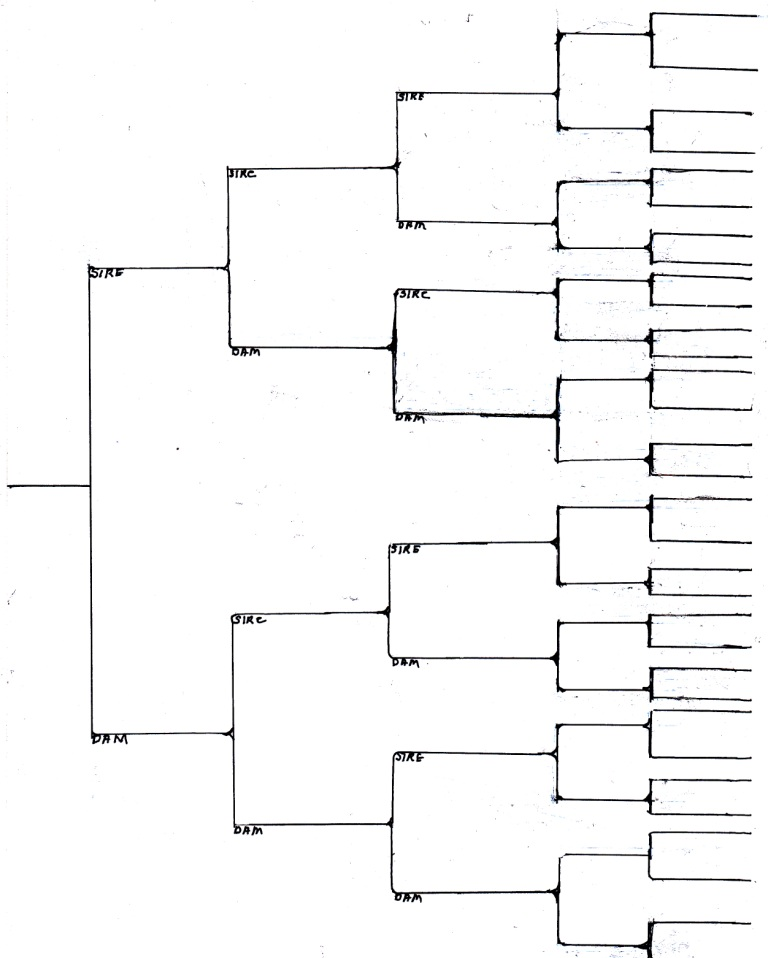 extended pedigree form